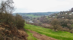 Looking down on Lower Lydbrook, the bottom half of my village run.