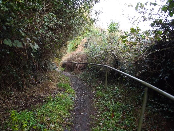 track-fenced3