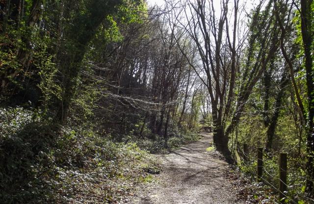 2.2rail path