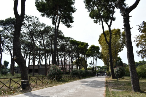 Avenue approaching Pompeii