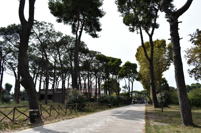 Avenue approaching Pompeii